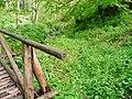 Wanderweg im Schweinbachtal zwischen Hirsau und Oberreichenbach - panoramio.jpg