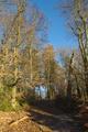 Wartenberg Steinberg Sattelstein Hiking Trails VHC Taunus Rhoen Weg KGV Schlitzer Hoeheweg NE.png
