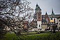 Wawel Cathedral 03.jpg