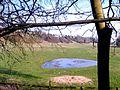 Ways View - geograph.org.uk - 1244888.jpg