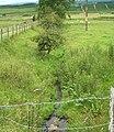 West of Knaggyfauld - geograph.org.uk - 493802.jpg
