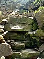 Wildboar Clough a dry waterfall - geograph.org.uk - 461465.jpg