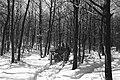 Winter, chariot Fortepan 19156.jpg