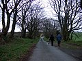 Winter walking - geograph.org.uk - 643739.jpg