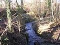 Woodland Stream - Easterly Road - geograph.org.uk - 1128278.jpg