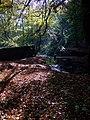 Woodland and Merrydale brook, Slaithwaite - geograph.org.uk - 1544804.jpg