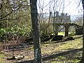 Woodland behind Bodidris Hall Hotel - geograph.org.uk - 349082.jpg