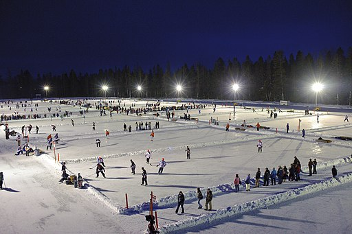 World Pond Hockey Championships Championnat mondial de hockey sur étang 2010
