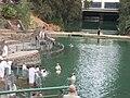 Yardenit - Jordan River 2.JPG