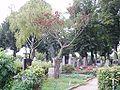 Zentralfriedhof Wien 022.jpg