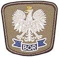 Znak orła BOR.jpg