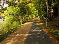 (PL) Polska - Warmia - Ścieżka nad jeziorem Długim w Lesie Miejskim w Olsztynie - Path on the Long Lake in the City Forest in Olsztyn (9.X.2012) - panoramio (6).jpg