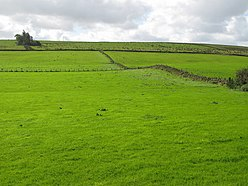 (The site of) Milecastle 47 (2) - geograph.org.uk - 1551268.jpg