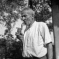 Čebelar Anton Kovačič s staro čebelarsko fajfo zoper čebele, Vrh 2 1952.jpg