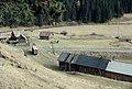 Čiernovážska lesná železnica (1988).jpg