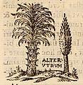 Œdipus Ægyptiacus, 1652-1654, 4 v. 2025 (25374644283).jpg