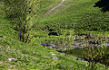 Виток річки Либідь 11.jpg