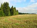 Изгиб - panoramio.jpg