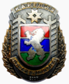Лауреат года Республики Карелия.png