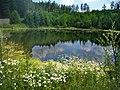 Лето - panoramio (1).jpg