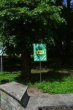 Парк ім Шевченка DSC 0614 05.jpg