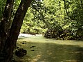 Посебни (геолошки) резерват природе Говјештица, Бања Стијена и Кањон Праче 34.jpg