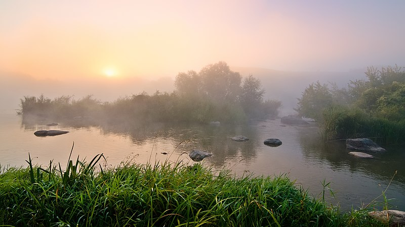 Заказник «Самчинецьке урочище» (Вінницька область). Автор — Q-lieb-in (CC-BY-SA-4.0)