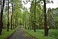 Трускавецький парк 18.jpg