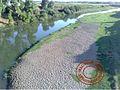 شاطئ رملي على نهر اللوكوس.jpg