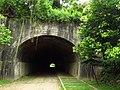 崎頂一、二號隧道 (5).JPG