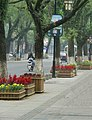 濱江路 Binjiang Road - panoramio.jpg