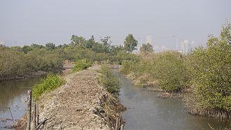 Bhandup - near Bhandup Pumping Station