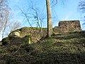 05 Lützelhardt Castle.JPG