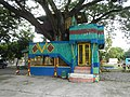 07359jfBagumbayan Roads Municipal Park Halls Victoria Llanera Nueva Ecijafvf 22.JPG