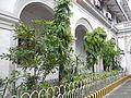 09151jfSanto Cristo del Tesoro College Santa Isabel Manilafvf 11.JPG