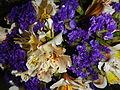 09621jfClose-ups of Limonium Alstroemeria flowersfvf 07.JPG