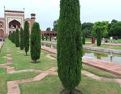 104-Taj-Mahal-Gardens.JPG