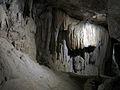 109 Cova de Sant Miquel del Fai, paret calcària.JPG