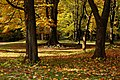 131103 Hokkaido University Botanical Gardens Sapporo Hokkaido Japan12s5.jpg