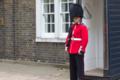 2010-365-232 On Guard (4911963333).png
