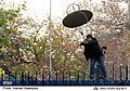 2011 attack on the British Embassy in Iran 46.jpg