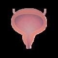 201405 bladder.png