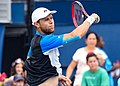 2017 US Open Tennis - Qualifying Rounds - Radu Albot (MDA) (27) def. Frank Dancevic (CAN) (36980332312).jpg