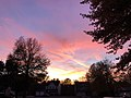2019-11-13 17 10 25 Sky and cirrus just after sunset along Ben Nevis Court in the Chantilly Highlands section of Oak Hill, Fairfax County, Virginia.jpg