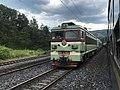 201908 SS3-4364 hauls Freight Train at Nibo Station.jpg