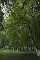 68-258-5014 Липова алея, Баламутівка.jpg