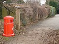 A bit of colour on a reserve path - geograph.org.uk - 1098501.jpg