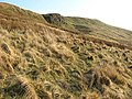 A crag at Under Nick on Arkleton Hill - geograph.org.uk - 636298.jpg