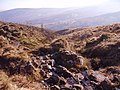 A rocky stream - geograph.org.uk - 694915.jpg