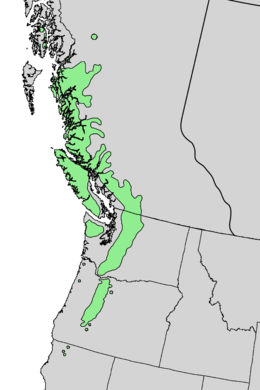 Abies amabilis range map 4.png